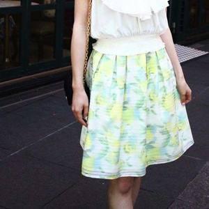 芸能人が若大将のゆうゆう散歩で着用した衣装スカート