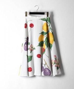 芸能人がスカッとジャパンで着用した衣装スカート