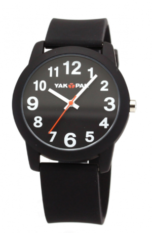 芸能人がケアニンで着用した衣装時計