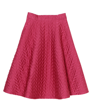 芸能人がminiで着用した衣装スカート
