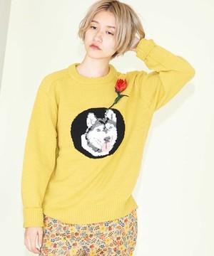 芸能人が番組で着用した衣装ニットセーター