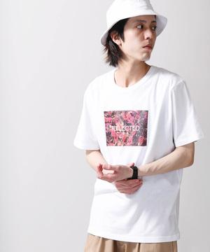 芸能人がチア☆ダンで着用した衣装トップス