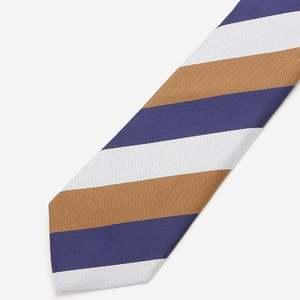 芸能人が中学聖日記で着用した衣装ネクタイ