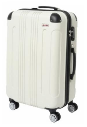 芸能人が向かいのバズる家族で着用した衣装スーツケース