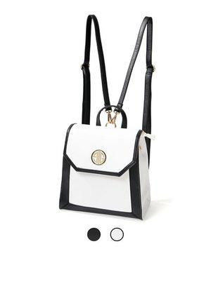 芸能人がブログで着用した衣装バッグ