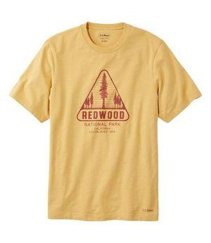 芸能人がにじいろカルテで着用した衣装Tシャツ